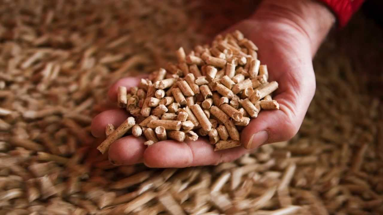 Pellets: about the merits of biofuels